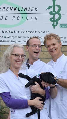 1-7 dierenarts Stolp Jansen van Zuylen-Jansen kat Dierenklinieken De Polder en Maassluisen