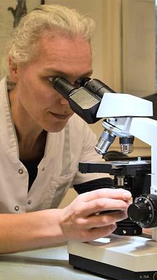 2-11 dierenarts Marjolein van Zuijlen-Jansen laboratorium microscoop Dierenklinieken De Polder en Maassluis